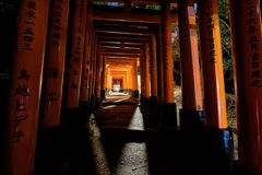 Torii gate of Fushimi Inari at night, Kyoto. Kyoto, Japan - November 11, 2015: Famous red torii gate with Jaapanese languages painted on the column at night of Royalty Free Stock Images
