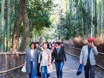 KYOTO, JAPAN - NOVEMBER 7, 2017: Mensen op de weg aan het bamboebos, Arashiyama royalty-vrije stock fotografie
