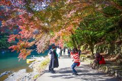 Kyoto, Japan - November 17, 2017 :Tourists taking photo near a r. Iver in Arashiyama, Kyoto, Japan Stock Image