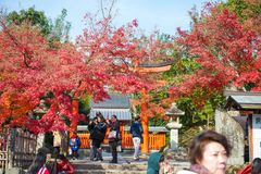 Kyoto, Japan - November 17, 2017 :Tourists visit Tenryuji temple. Is the famous zen temple in Kyoto, Japan Royalty Free Stock Images