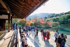 Kyoto, Japan - November 17, 2017 :Tourists visit zen garden in a. Utumn season at Tenryuji temple, Kyoto, Japan Royalty Free Stock Image