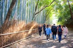 Kyoto, Japan - November 16, 2017 :The tourists are walking path. Through the bamboo forest at Arashiyama, Kyoto, Japan Royalty Free Stock Image
