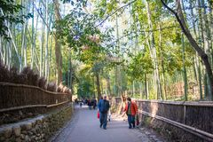 Kyoto, Japan - November 16, 2017 :The tourists are walking path. Through the bamboo forest at Arashiyama, Kyoto, Japan Royalty Free Stock Images