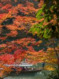 Cruising boat along river in Arashiyama, Japan. KYOTO, JAPAN - OCTOBER 24 : Old classic cruising boat along river with colorful leaves trees in autumn season in Stock Photography
