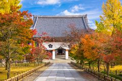 Kyoto Japan på Chishaku-i templet Royaltyfri Fotografi