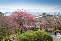 Kyoto Japan på Kiyomizuen-dera Royaltyfri Bild