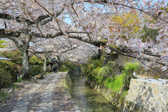 Kyoto, Japan at Philosopher's Walk in the Springtime. Royalty Free Stock Photography