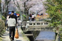 Kyoto, Japan at Philosopher's Walk in the Springtime. Royalty Free Stock Photo