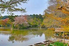 Kyoto, Japan springtime at Ryoanji Temple. The Kyoto, Japan springtime at Ryoanji Temple Stock Images