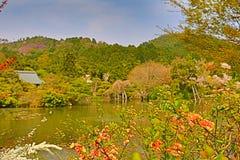 Kyoto, Japan springtime at Ryoanji Temple& x27;s pond. A Kyoto, Japan springtime at Ryoanji Temple& x27;s pond Royalty Free Stock Photos