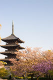 Kyoto, Japan at Toji temple Stock Photos