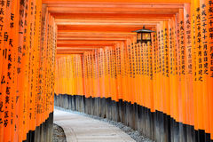 Kyoto Japan Torii Gates Stock Photos