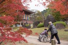 Kyoto, Japan Tourist at Chishaku-in Temple. In the autumn season Royalty Free Stock Photo