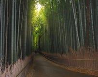 Kyoto, Japon à la forêt en bambou Images libres de droits
