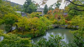 Kyoto, JAPON, le 15 août 2017 : Le jardin japonais est l'un du les plus populaires et des secteurs à la mode de la culture japona Photo libre de droits