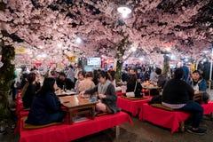 KYOTO JAPONIA, KWIECIEŃ, - 7, 2017: Japonia tłoczy się cieszy się wiosnę Cher zdjęcie stock