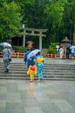 KYOTO JAPONIA, LIPIEC, - 05, 2017: Młode Japońskie kobiety jest ubranym tradycyjnego kimono i trzyma parasole w ich rękach wewnąt Obraz Royalty Free