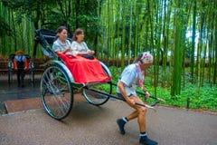 KYOTO JAPONIA, LIPIEC, - 05, 2017: Niezidentyfikowani ludzie w czerwonym riksza z osobą jedzie je w ścieżce przy pięknym Zdjęcie Stock