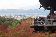 Kyoto Japonia, LISTOPAD, - 25, 2016 - piękna Momiji jesień c Zdjęcia Stock