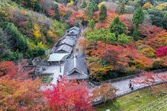 Kyoto Japonia, LISTOPAD, - 25, 2016 - piękna Momiji jesień c Fotografia Royalty Free