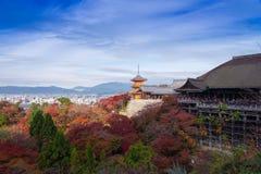 Kyoto Japonia, LISTOPAD, - 25, 2016 - piękna Momiji jesień c Zdjęcia Royalty Free
