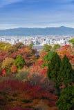 Kyoto Japonia, LISTOPAD, - 25, 2016 - piękna Momiji jesień c Obrazy Royalty Free