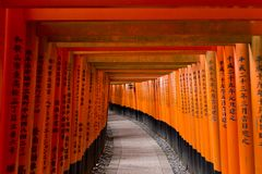 Kyoto Japonia, Maj, - 9, 2017: Torii bramy przy Fushimi Inari Taisha Fotografia Stock