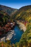 Kyoto jesień Obraz Stock