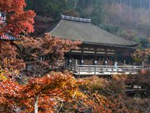 Kyoto Kiyomizu Temple. Autumn leaves and the Kyoto Kiyomizu Temple Royalty Free Stock Photos