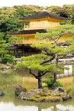 KYOTO - 29 MAGGIO: Il tempio di Kinkakuji sopra può 29, 2008, Kyoto. Il Giappone Fotografia Stock Libera da Diritti