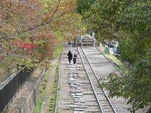 Kyoto min förälskelse Royaltyfri Bild