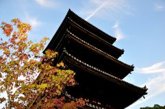 Kyoto Ninnaji temple five storied pagoda autumn Royalty Free Stock Photos