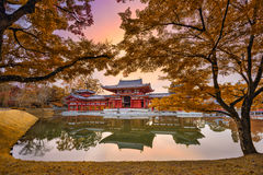 Kyoto no outono Imagens de Stock Royalty Free