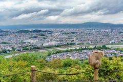 Kyoto od Arashiyama góry z zamazaną małpą Fotografia Royalty Free