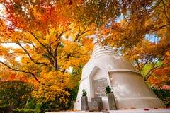 Kyoto-Pagoden-Herbst Stockfoto