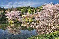 Kyoto - Ryoanji Stock Images