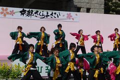 Kyoto Sakura Yosakoi 2010 - Dance festival Royalty Free Stock Image