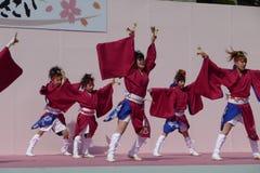 Kyoto Sakura Yosakoi 2010 - festival di ballo fotografia stock libera da diritti