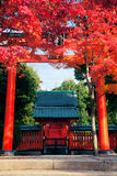 Kyoto Shrine Royalty Free Stock Photography