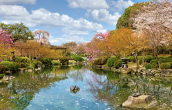 Kyoto in spring, Japan Stock Image