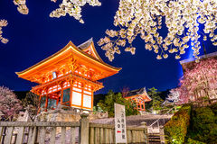 Kyoto Temple at night in the Spring. Kyoto, Japan at Kiyomizu-dera Shrine In the Spring Stock Image