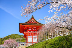 Kyoto Temples in the Spring Stock Images