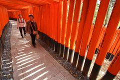 Kyoto torii gates Royalty Free Stock Photography