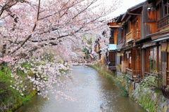 Kyoto trähus och sakura Royaltyfri Foto