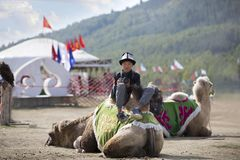 Young photographer sitting on a camel and resting royalty free stock photo