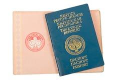 kyrgyz пасспорт Стоковое Изображение RF