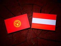 Kyrgyzstan flag with Austrian flag on a tree stump  Royalty Free Stock Image
