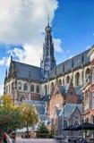 Kyrka av helgonet Bavo, Haarlem, Nederl?nderna arkivfoton