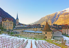 Kyrka av St Martin och vingården i Chur på soluppgång arkivfoton