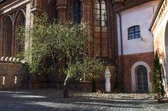 Kyrka för St Anne ` s och kyrka av Bernardine Monastery i Vilnius Royaltyfri Foto